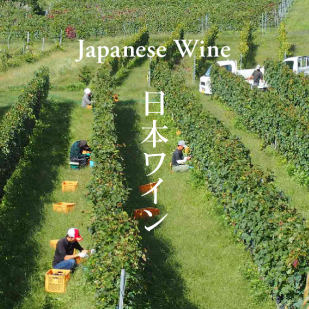 STORIES Japanese Wine 191206