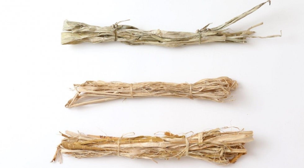Japan House London - 'Kōzo' (mulberry), 'mitsumata' and 'ganpi' are the three fibres used to make 'washi'